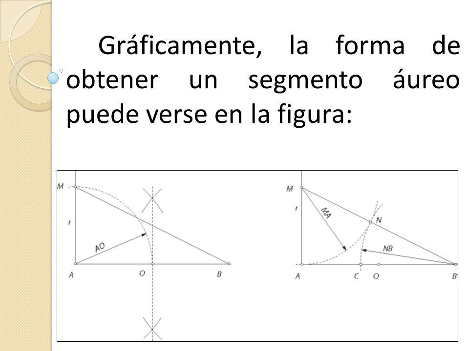 Gráficamente, la forma de obtener un segmento áureo puede verse en la figura: