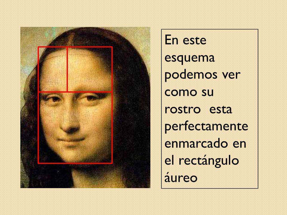 En este esquema podemos ver como su rostro esta perfectamente enmarcado en el rectángulo áureo