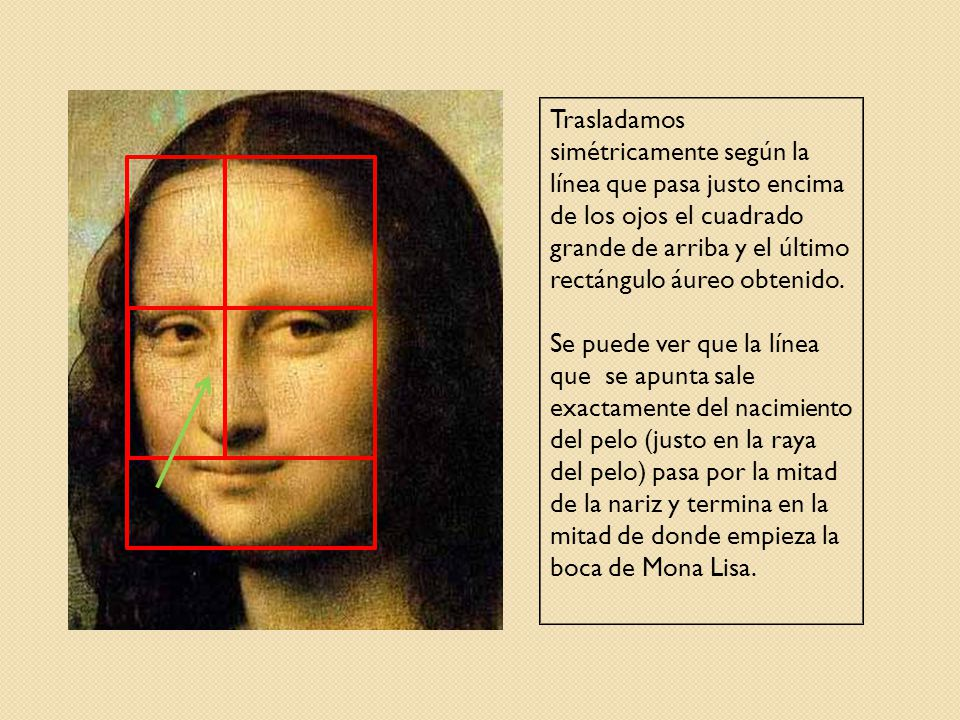 Trasladamos simétricamente según la línea que pasa justo encima de los ojos el cuadrado grande de arriba y el último rectángulo áureo obtenido.