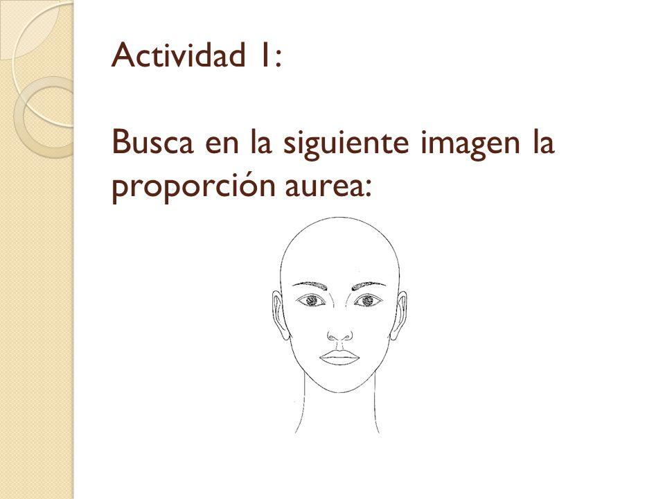 Actividad 1: Busca en la siguiente imagen la proporción aurea: