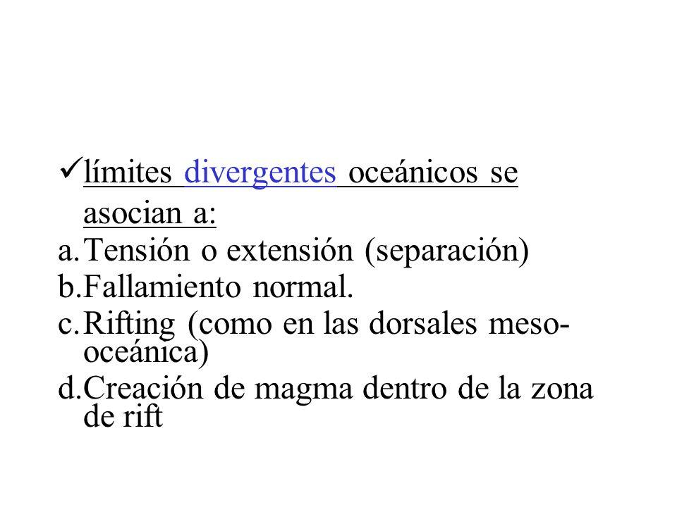 límites divergentes oceánicos se asocian a: