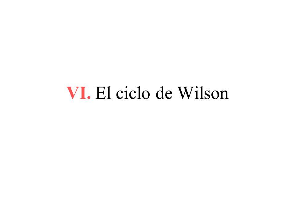 VI. El ciclo de Wilson