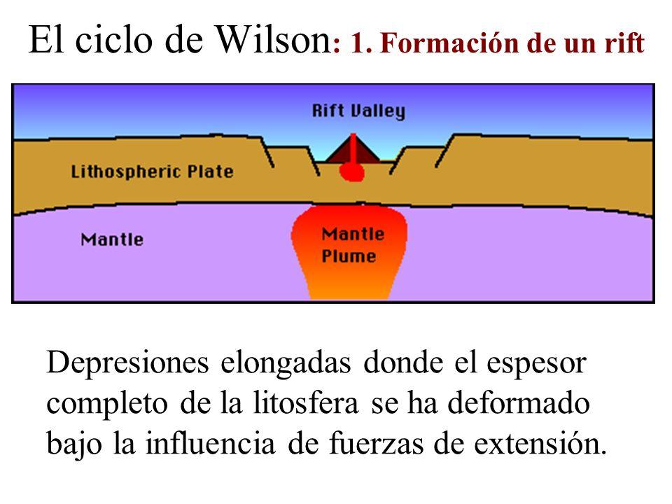 El ciclo de Wilson: 1. Formación de un rift