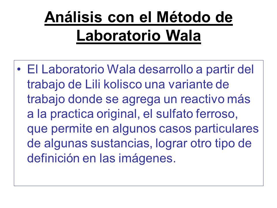 Análisis con el Método de Laboratorio Wala