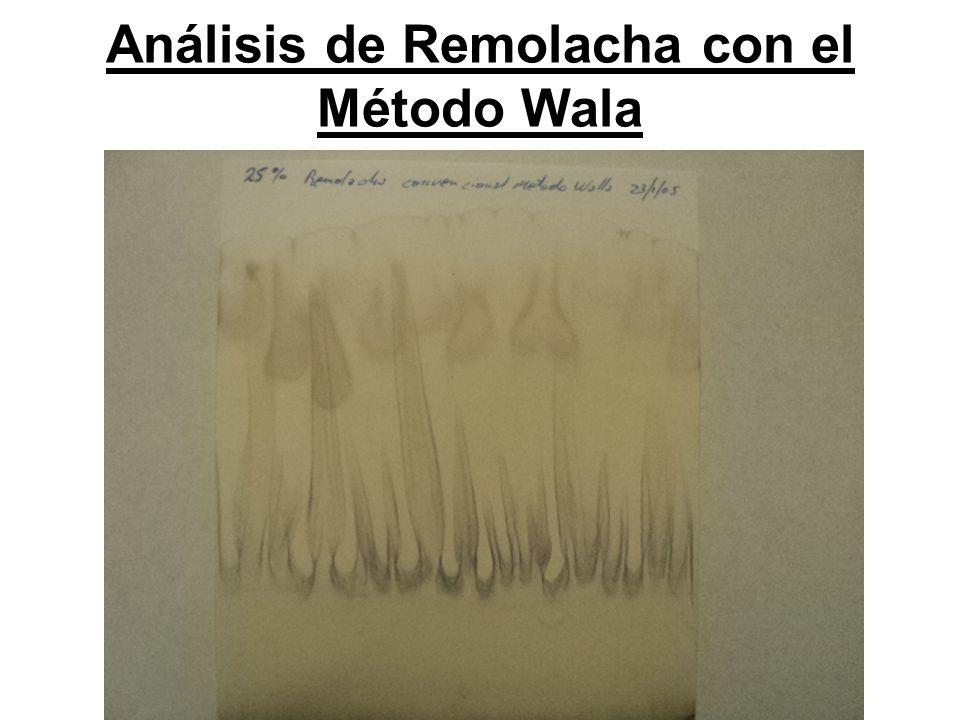 Análisis de Remolacha con el Método Wala