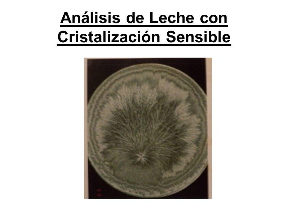 Análisis de Leche con Cristalización Sensible
