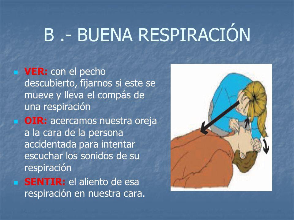 B .- BUENA RESPIRACIÓN VER: con el pecho descubierto, fijarnos si este se mueve y lleva el compás de una respiración.