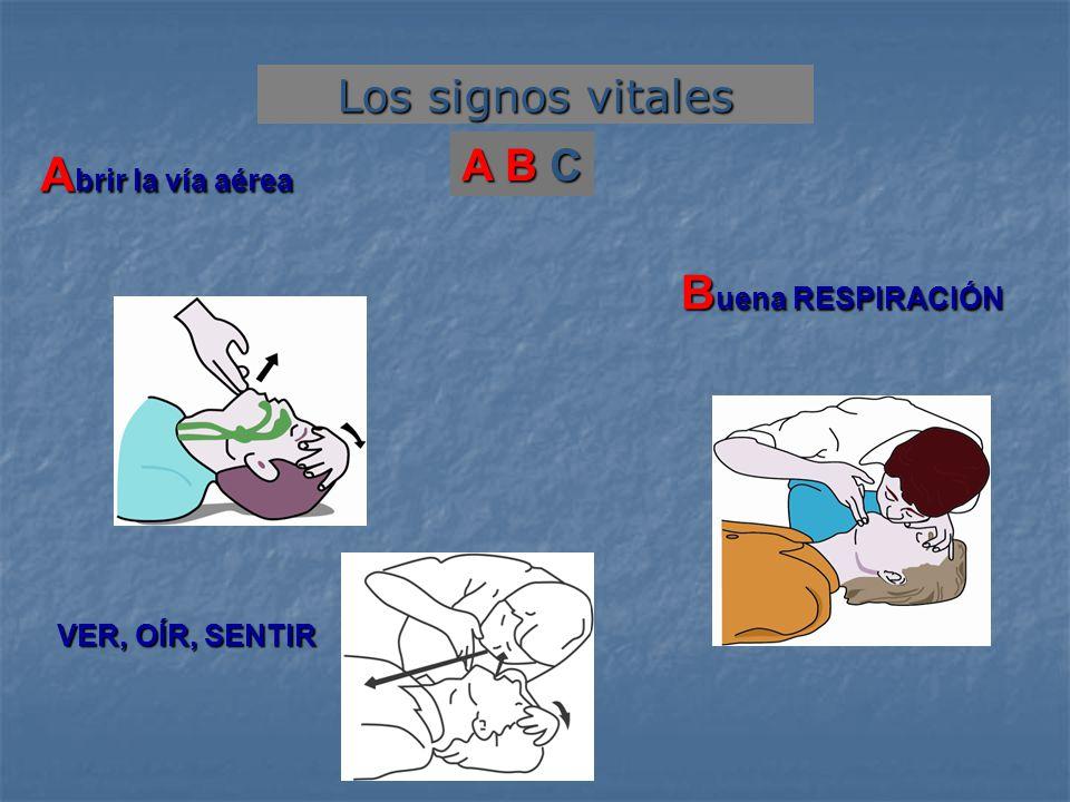Abrir la vía aérea Buena RESPIRACIÓN Los signos vitales A B C