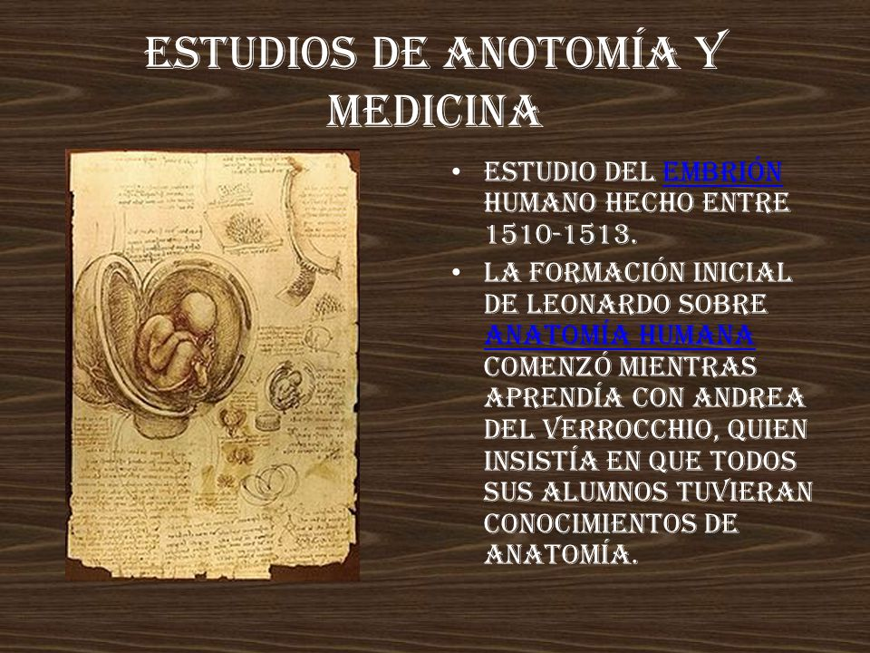 Estudios de anotomía y medicina