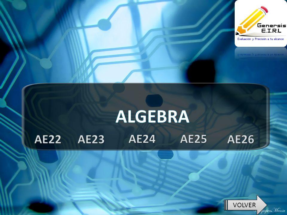 ALGEBRA AE22 AE23 AE24 AE25 AE26 VOLVER