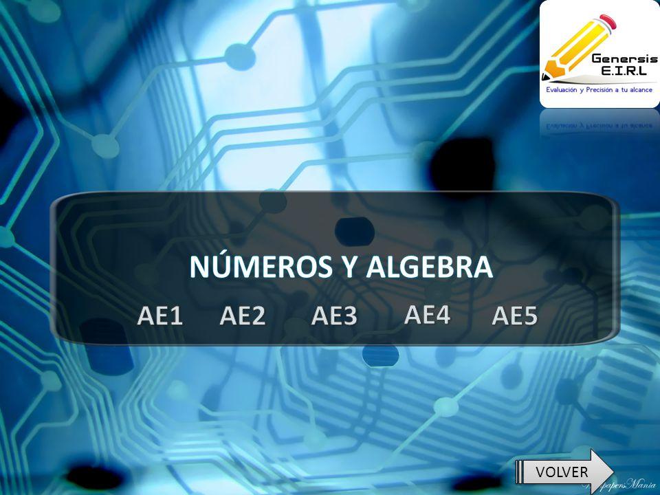 NÚMEROS Y ALGEBRA AE1 AE2 AE3 AE4 AE5 VOLVER