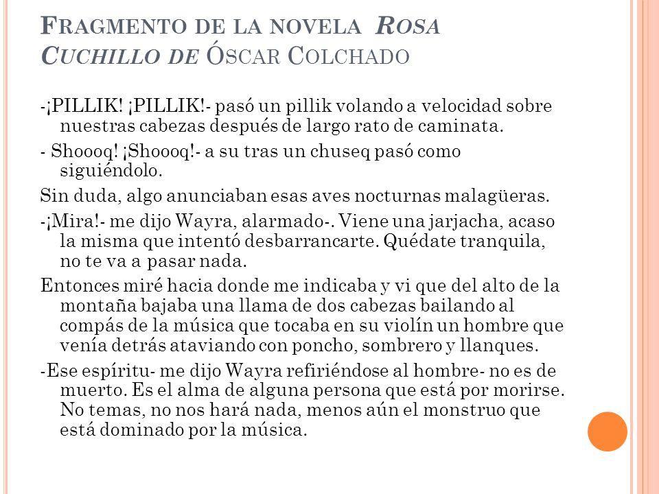 Fragmento de la novela Rosa Cuchillo de Óscar Colchado