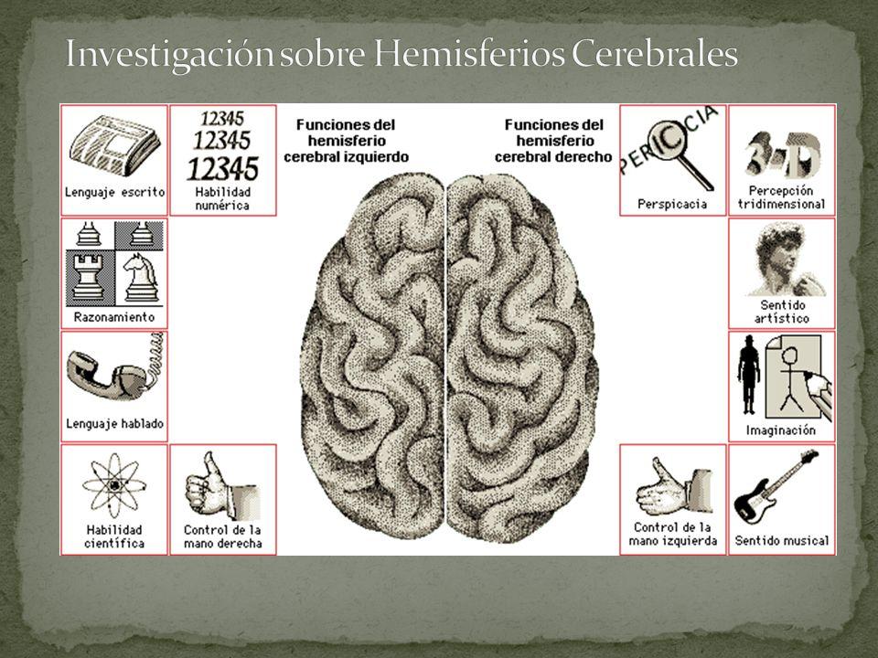 Investigación sobre Hemisferios Cerebrales