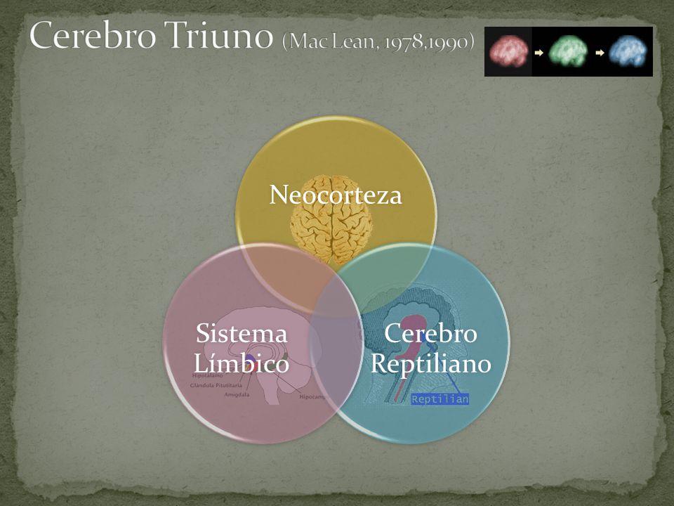 Cerebro Triuno (Mac Lean, 1978,1990)