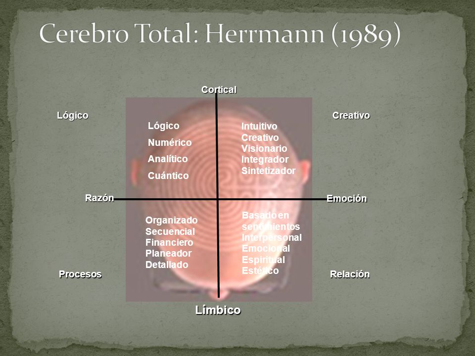 Cerebro Total: Herrmann (1989)
