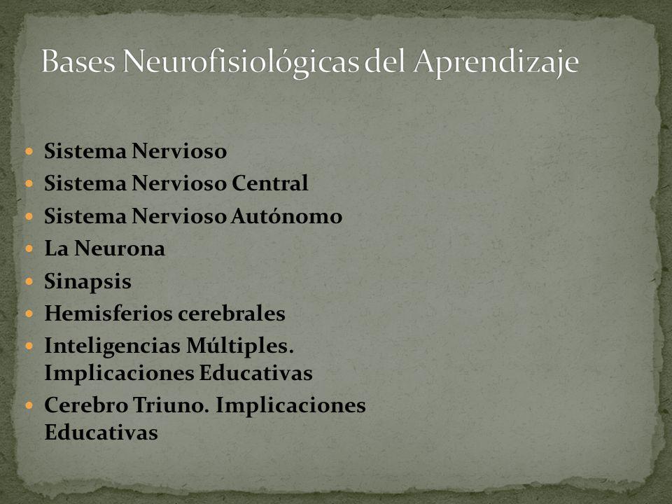 Bases Neurofisiológicas del Aprendizaje