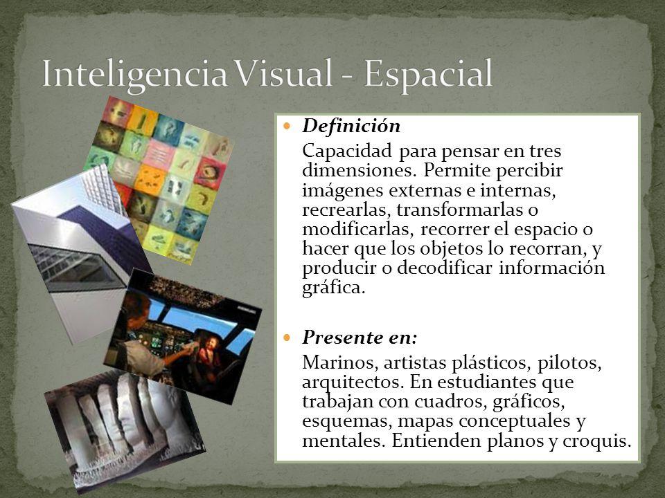 Inteligencia Visual - Espacial