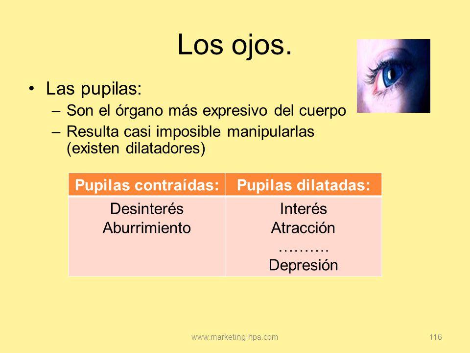 Los ojos. Las pupilas: Son el órgano más expresivo del cuerpo