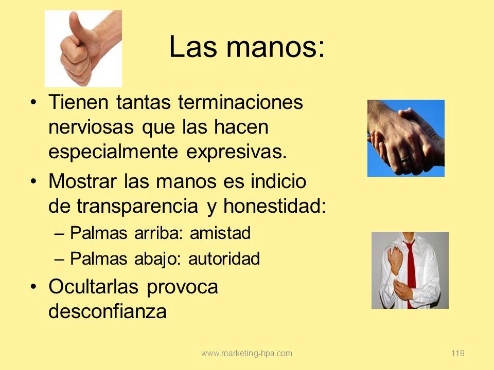 Las manos: Tienen tantas terminaciones nerviosas que las hacen especialmente expresivas. Mostrar las manos es indicio de transparencia y honestidad: