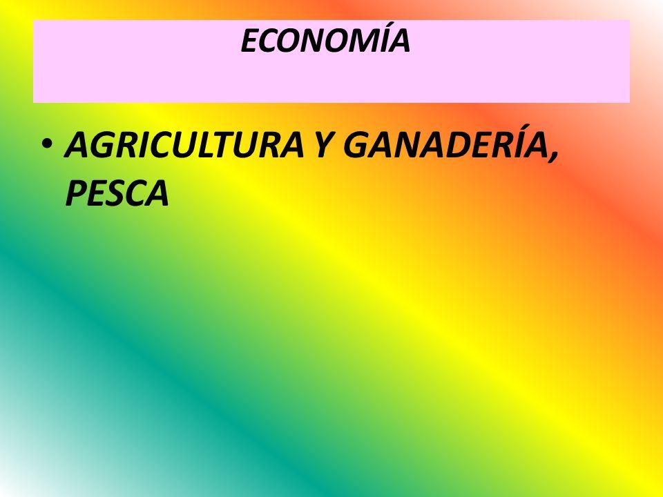 AGRICULTURA Y GANADERÍA, PESCA