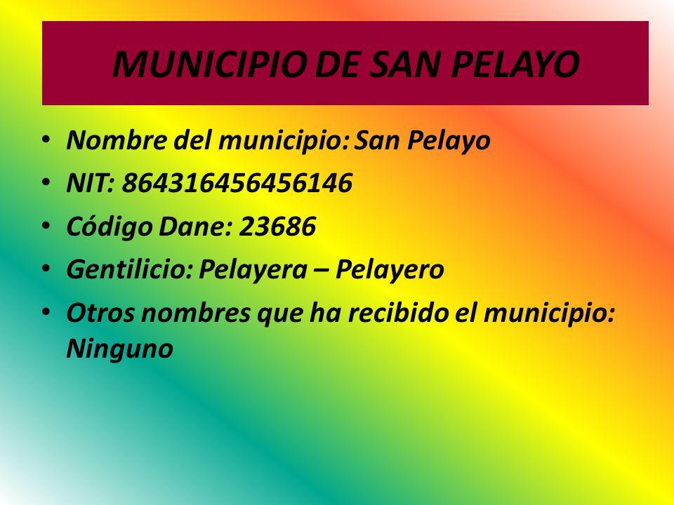 MUNICIPIO DE SAN PELAYO