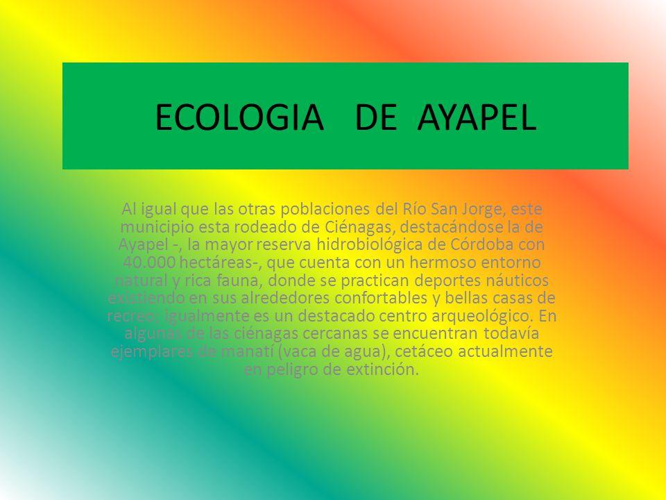 ECOLOGIA DE AYAPEL