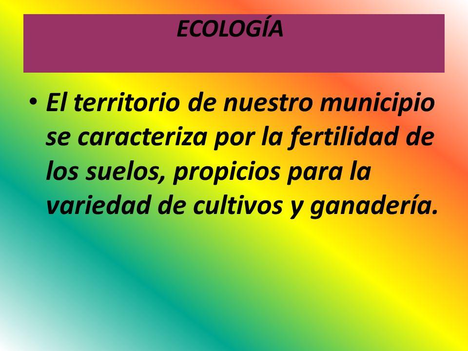 ECOLOGÍA El territorio de nuestro municipio se caracteriza por la fertilidad de los suelos, propicios para la variedad de cultivos y ganadería.