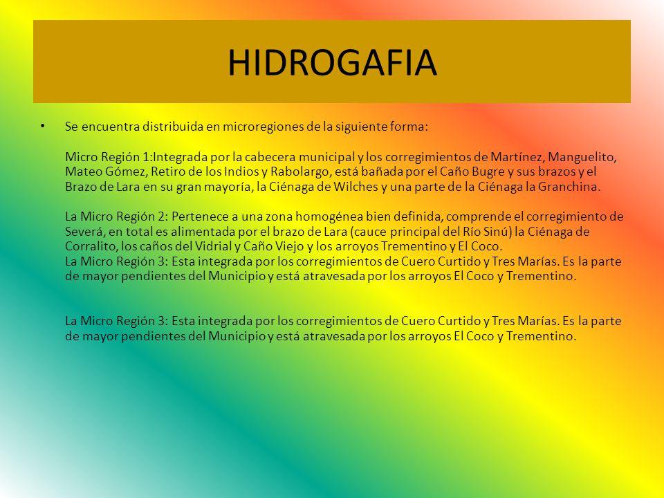 HIDROGAFIA