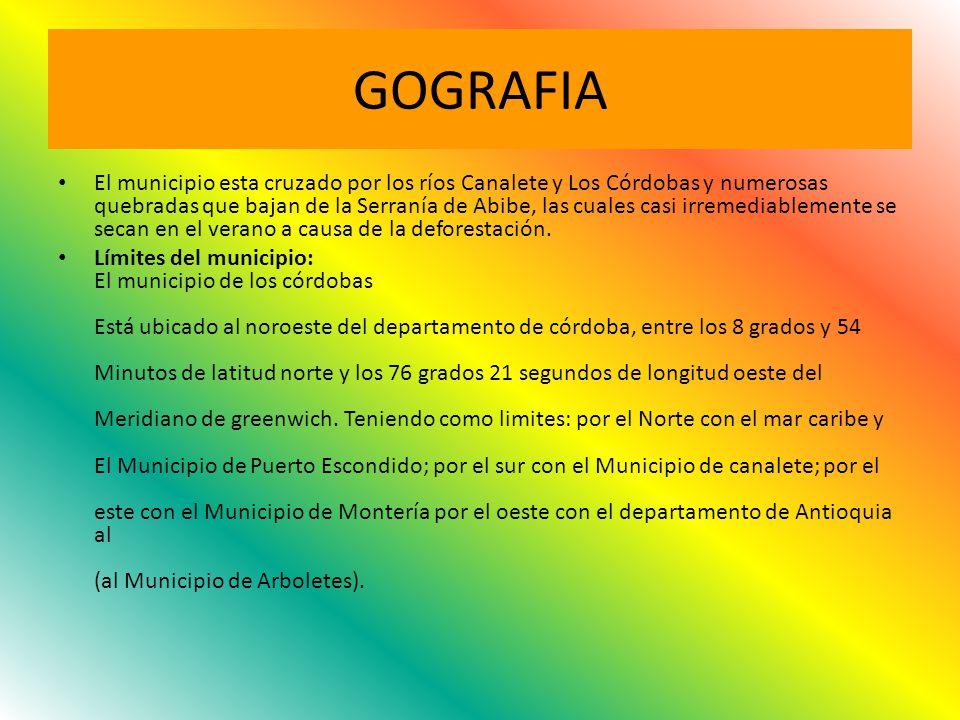 GOGRAFIA
