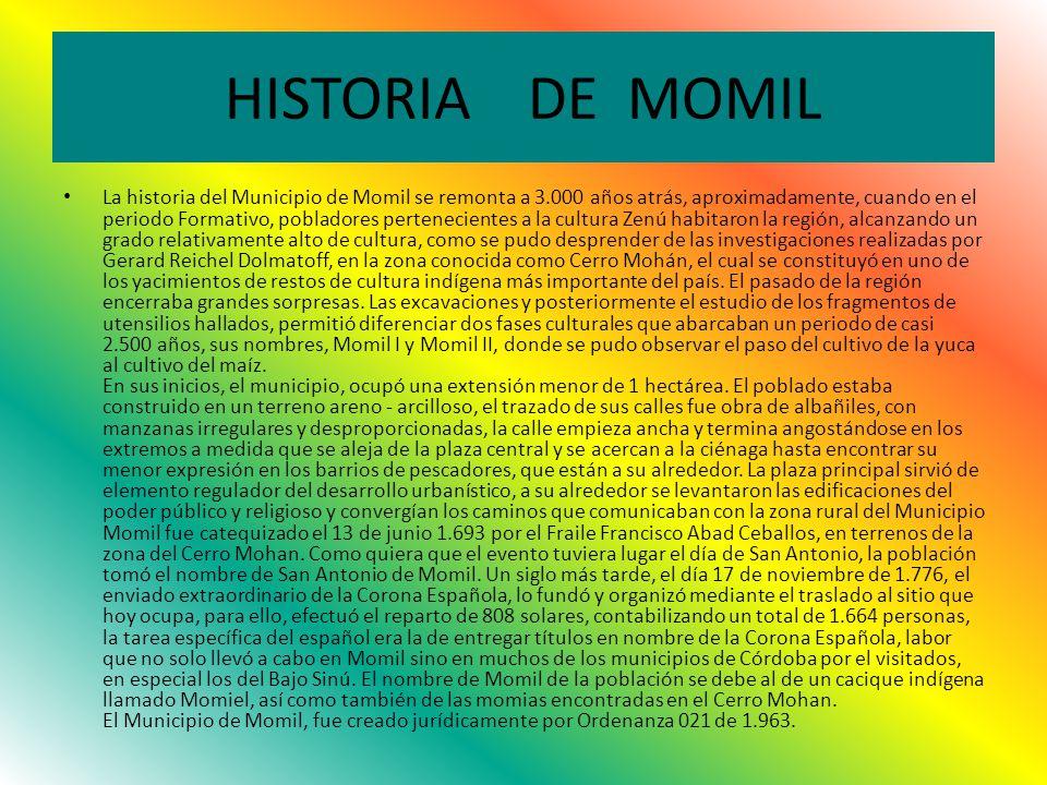 HISTORIA DE MOMIL
