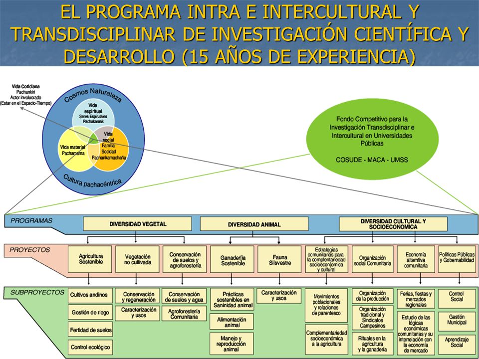 EL PROGRAMA INTRA E INTERCULTURAL Y TRANSDISCIPLINAR DE INVESTIGACIÓN CIENTÍFICA Y DESARROLLO (15 AÑOS DE EXPERIENCIA)