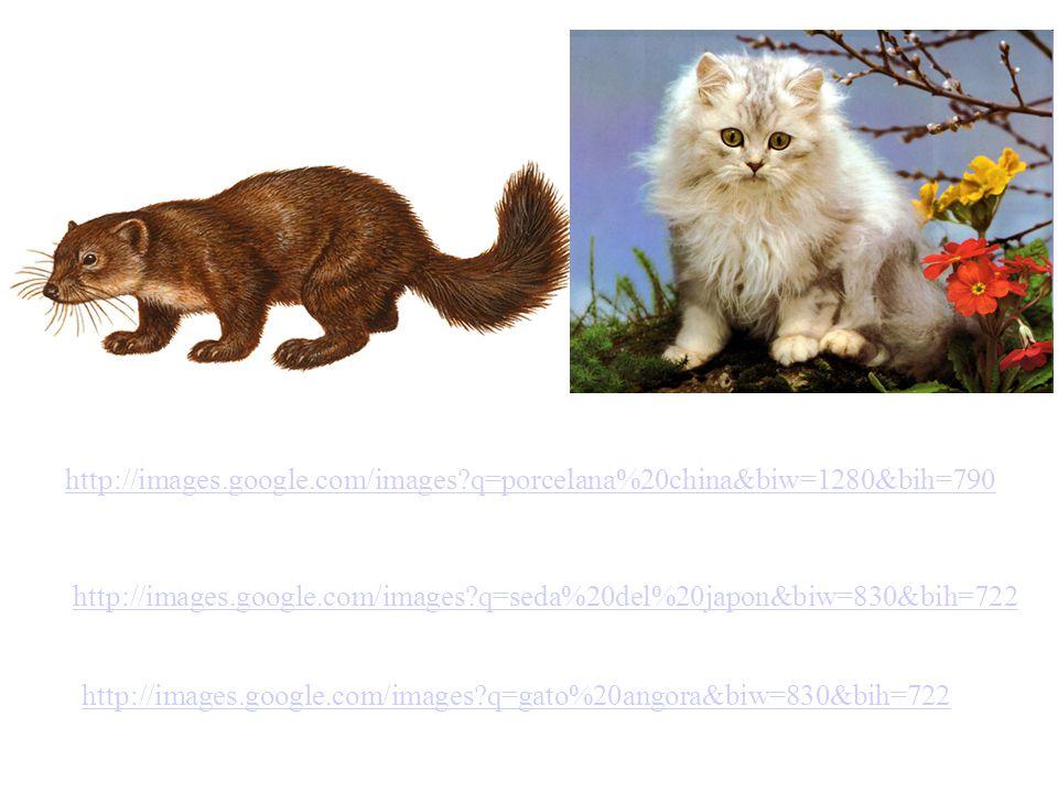 http://images.google.com/images q=porcelana%20china&biw=1280&bih=790 http://images.google.com/images q=seda%20del%20japon&biw=830&bih=722.