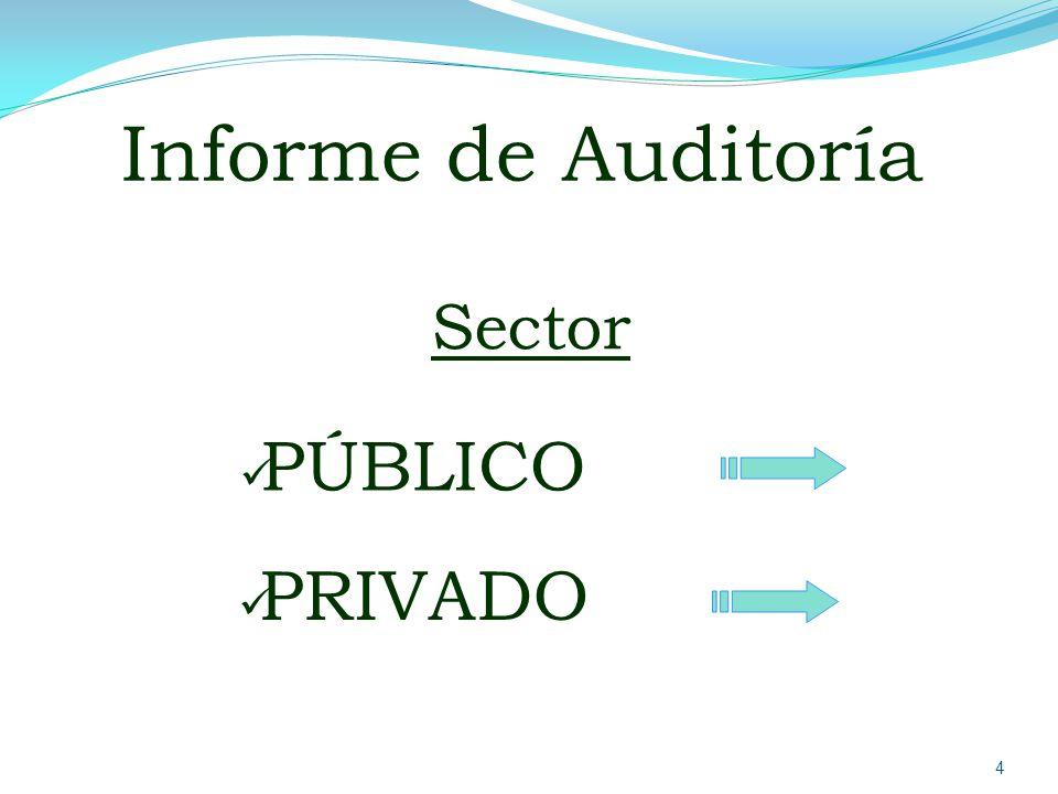 Informe de Auditoría Sector PÚBLICO PRIVADO