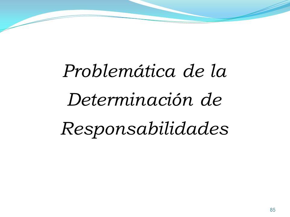 Problemática de la Determinación de Responsabilidades
