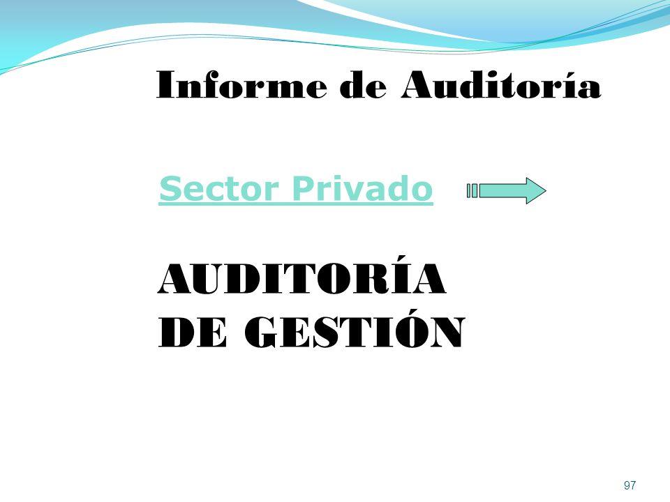 Informe de Auditoría Sector Privado AUDITORÍA DE GESTIÓN