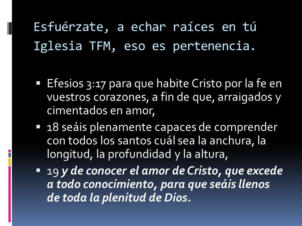 Esfuérzate, a echar raíces en tú Iglesia TFM, eso es pertenencia.