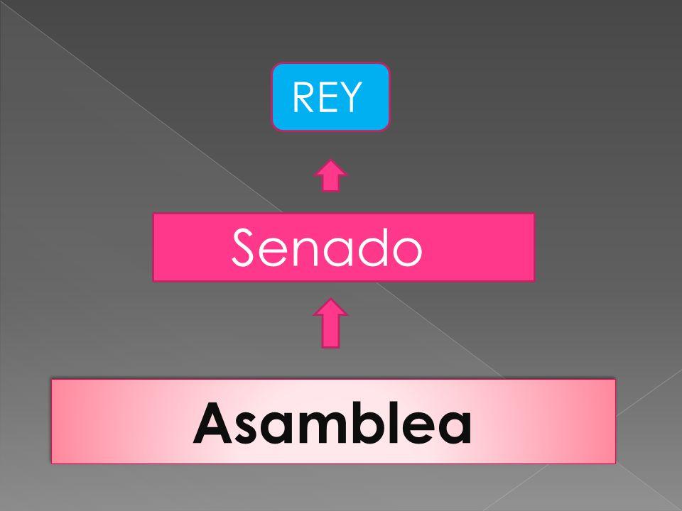 REY Senado Asamblea