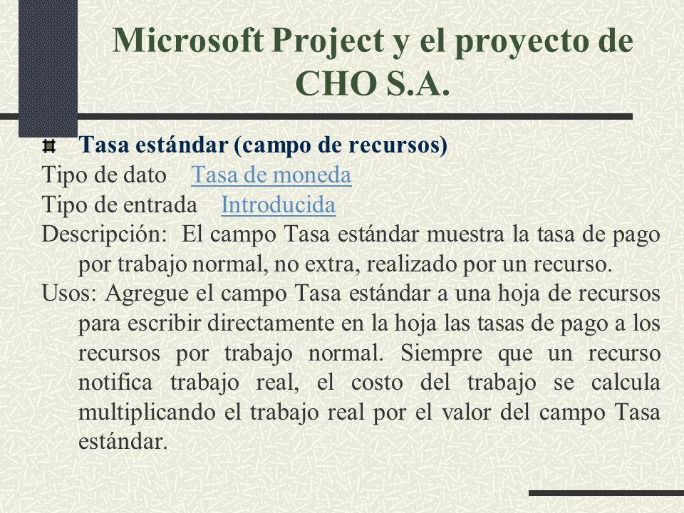 Microsoft Project y el proyecto de CHO S.A.