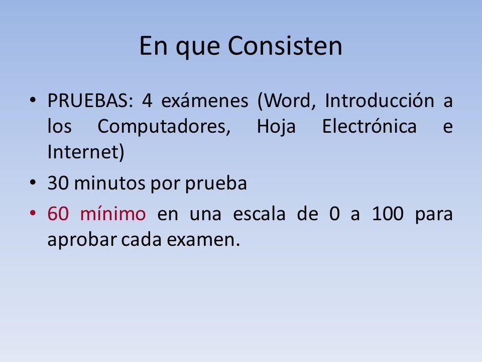 En que Consisten PRUEBAS: 4 exámenes (Word, Introducción a los Computadores, Hoja Electrónica e Internet)