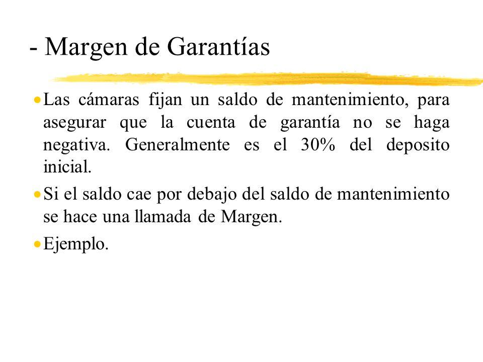 - Margen de Garantías