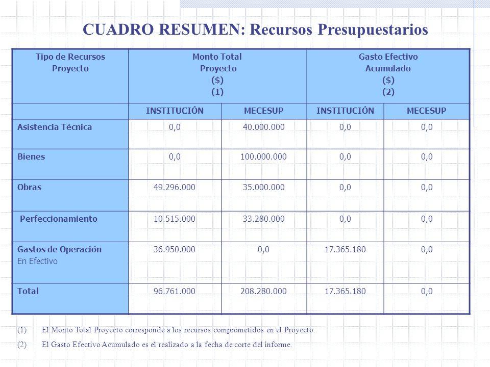 CUADRO RESUMEN: Recursos Presupuestarios