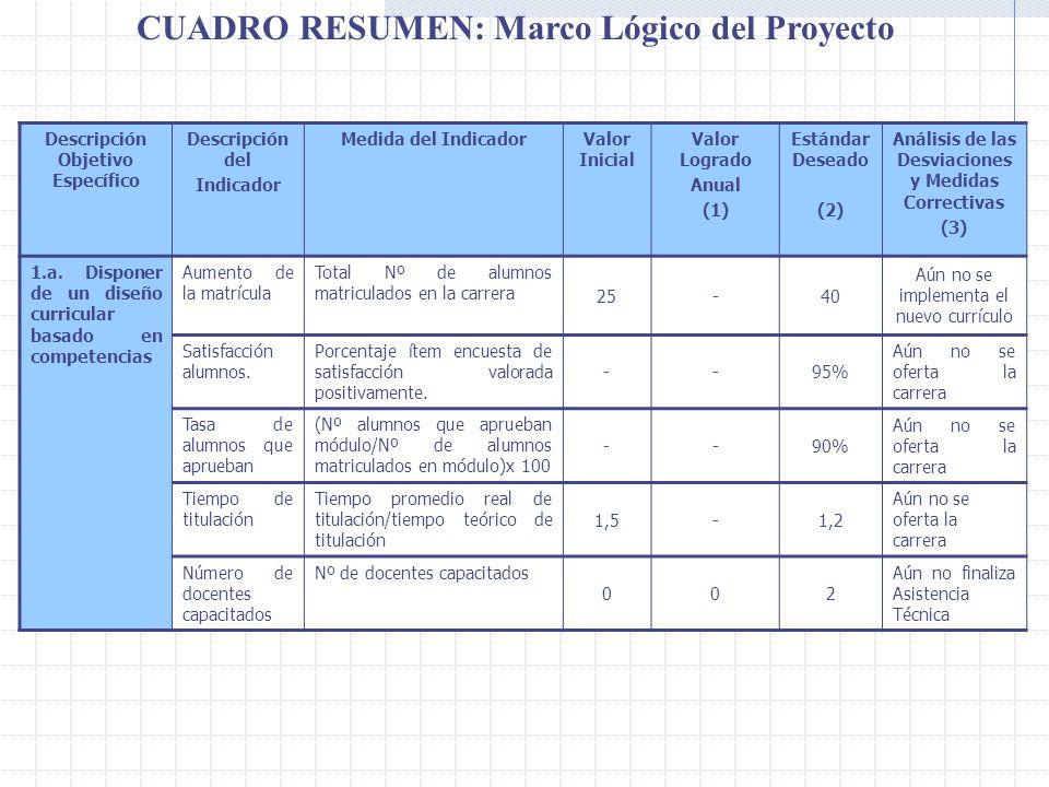 CUADRO RESUMEN: Marco Lógico del Proyecto