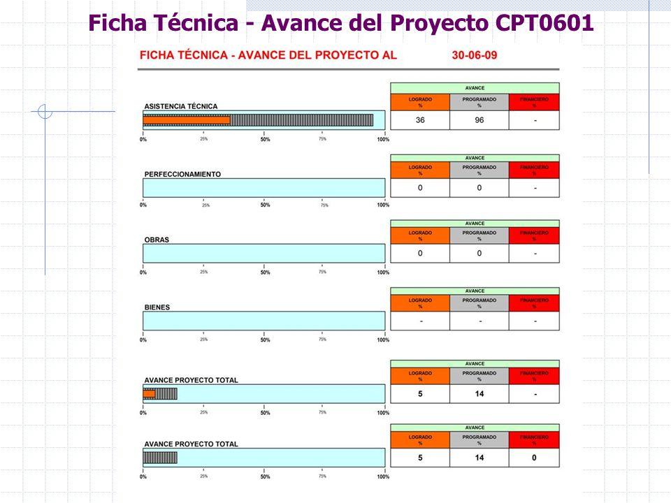 Ficha Técnica - Avance del Proyecto CPT0601