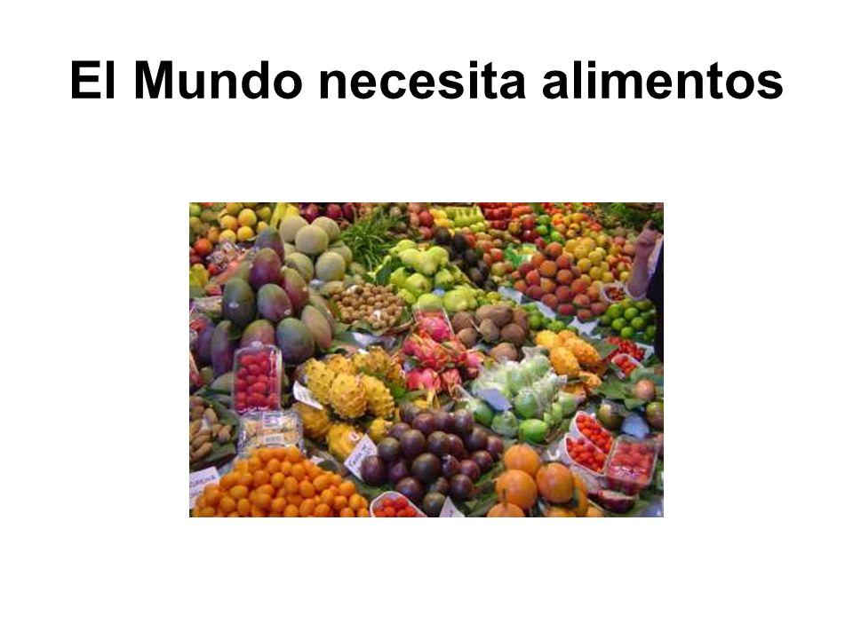 El Mundo necesita alimentos