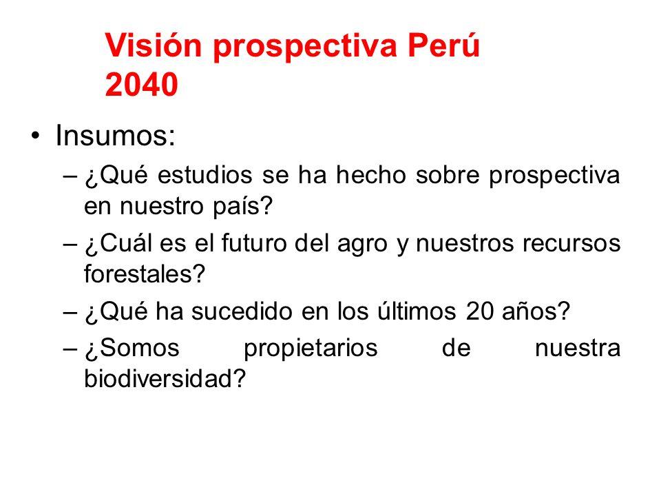 Visión prospectiva Perú 2040