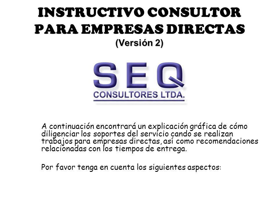 INSTRUCTIVO CONSULTOR PARA EMPRESAS DIRECTAS (Versión 2)