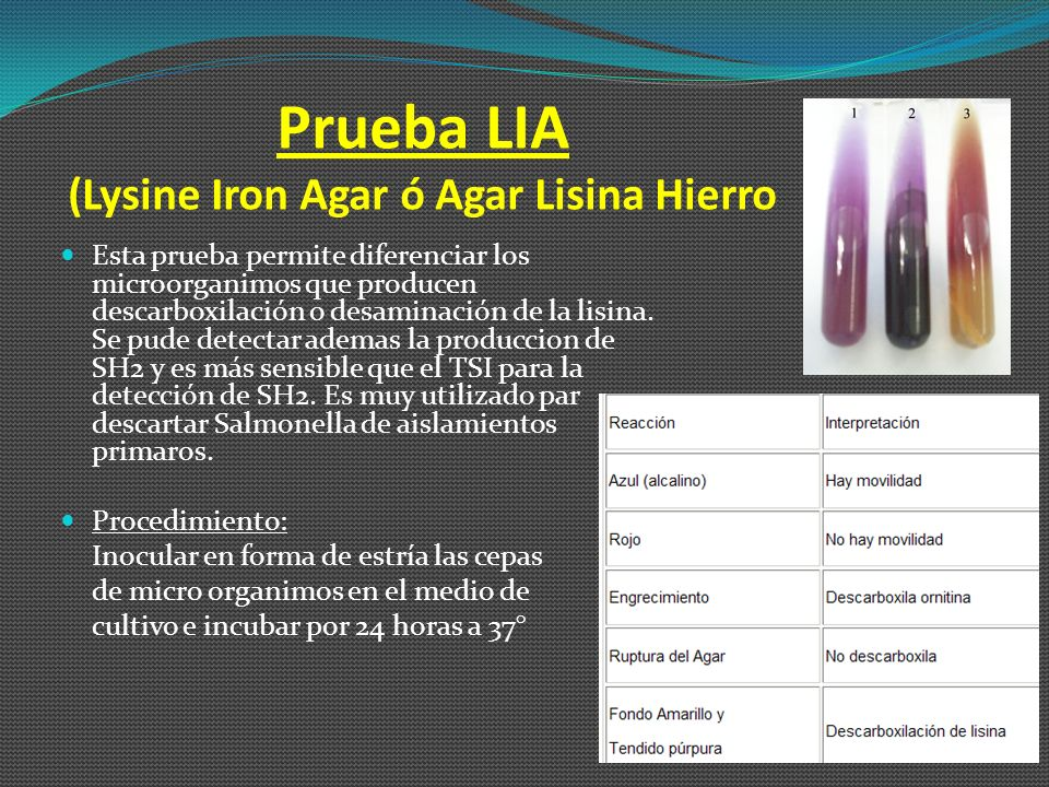 Prueba LIA (Lysine Iron Agar ó Agar Lisina Hierro