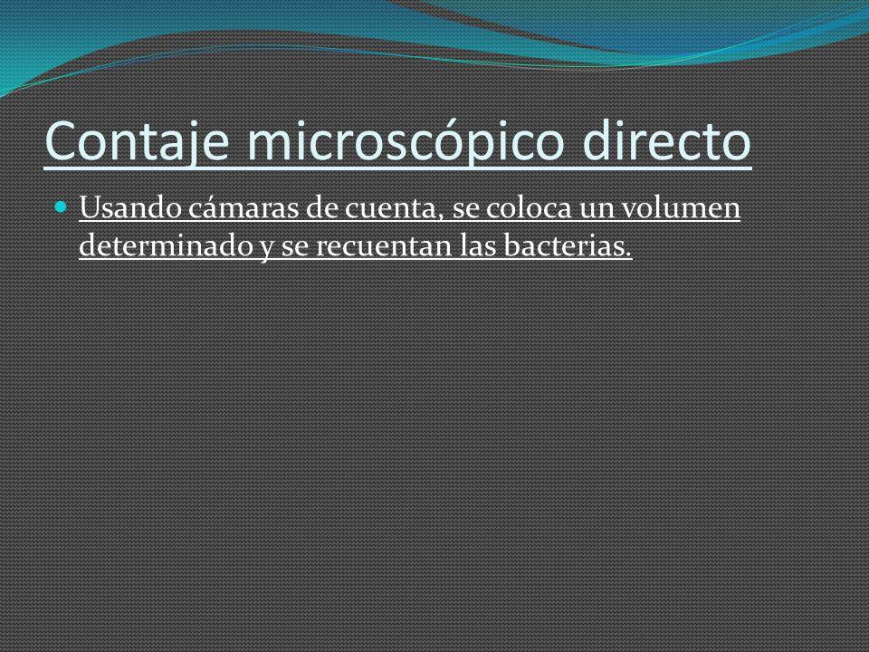 Contaje microscópico directo