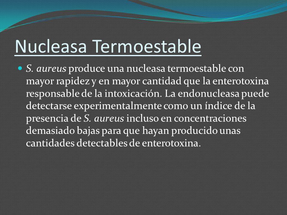 Nucleasa Termoestable