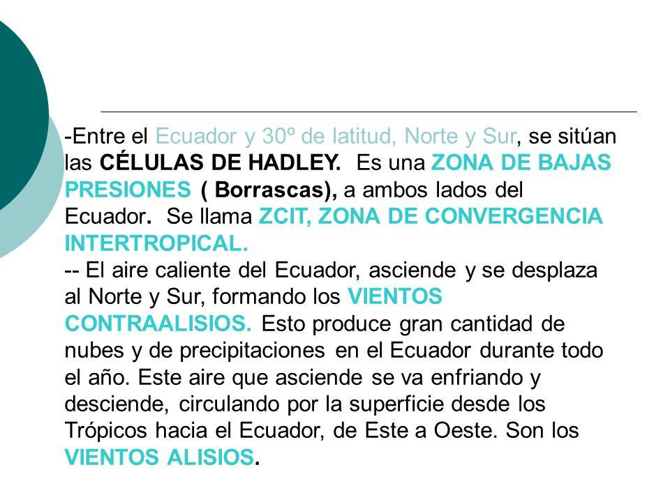 Entre el Ecuador y 30º de latitud, Norte y Sur, se sitúan las CÉLULAS DE HADLEY. Es una ZONA DE BAJAS PRESIONES ( Borrascas), a ambos lados del Ecuador. Se llama ZCIT, ZONA DE CONVERGENCIA INTERTROPICAL.